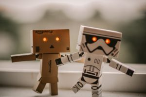 robots для wordpress